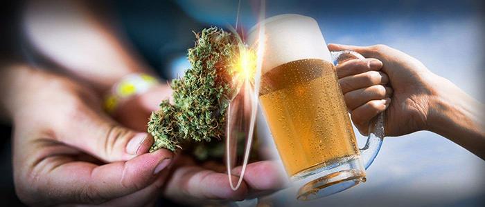 Что вреднее: алкоголь или каннабис?
