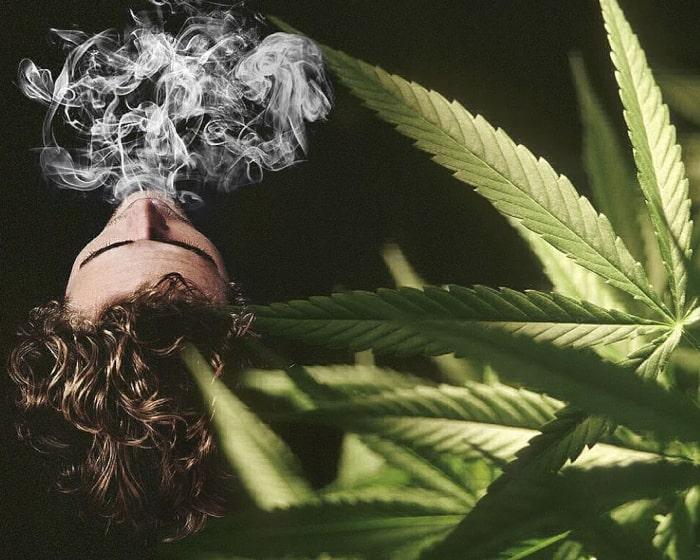 Хитрые советы, как скрыть запах марихуаны