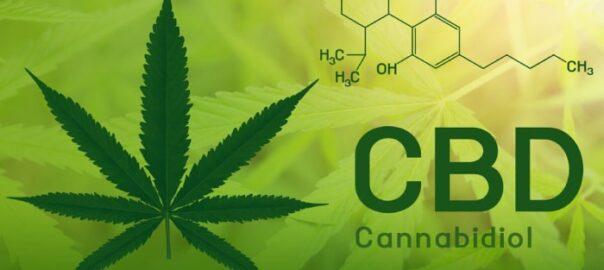 Как каннабидиол снижает наркотическую зависимость